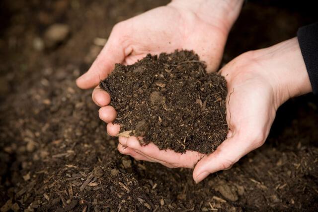 acidez ph, suelo, tierra
