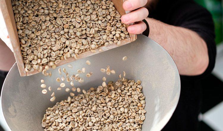 Proceso de beneficiado del café